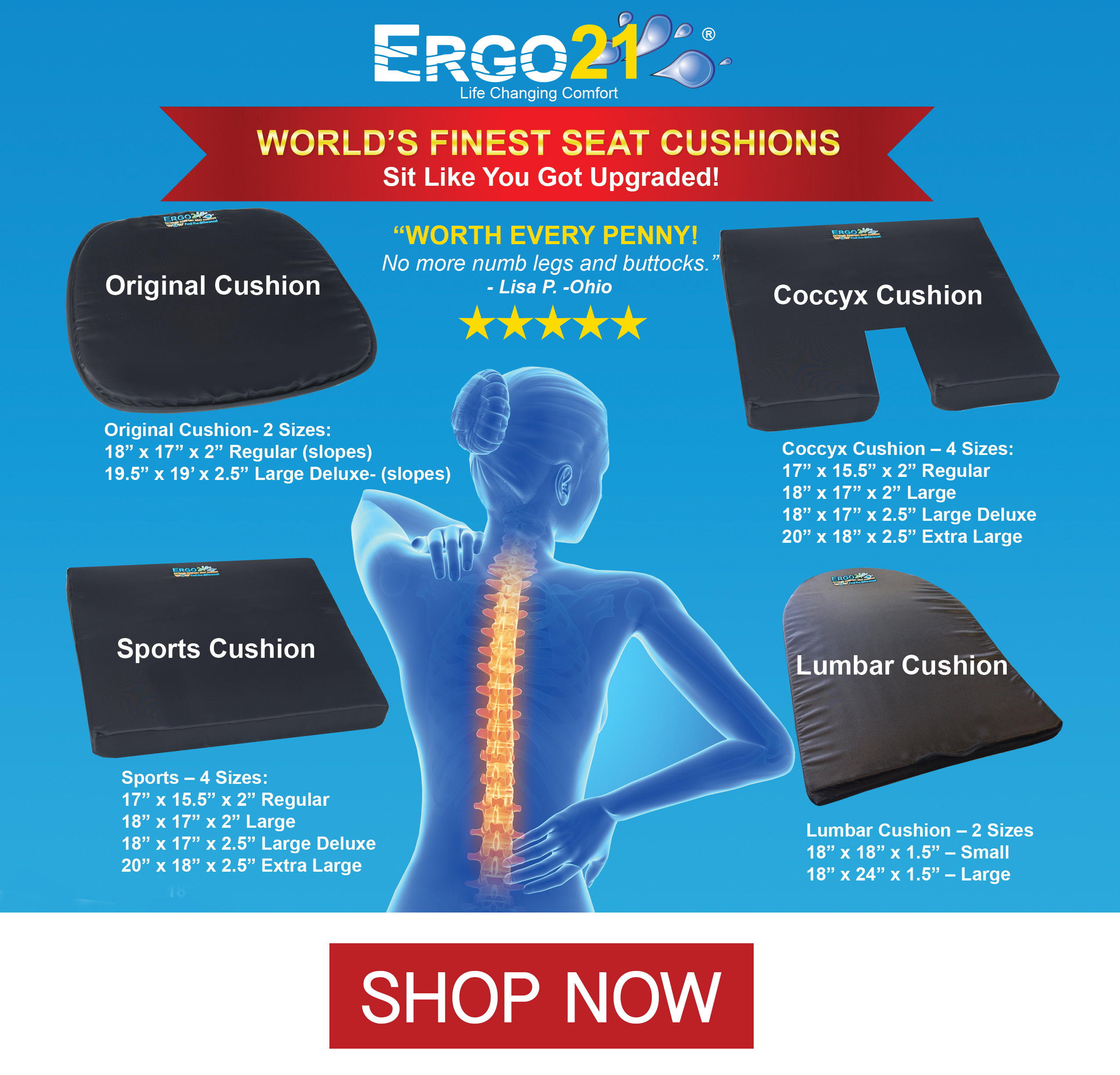 ergo21 seat cushion for pain relief better than gel or foam